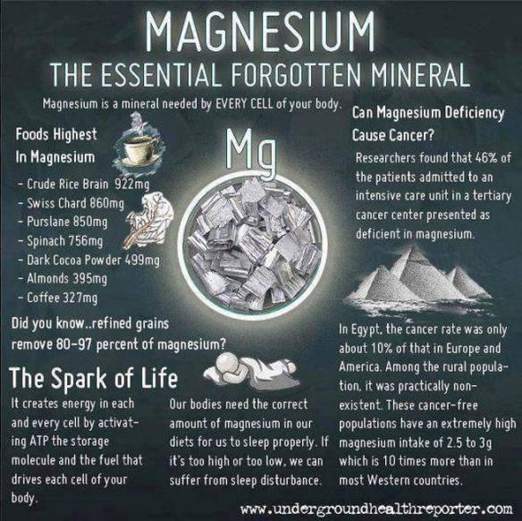 MEDICAL CORNER .... Magnesium