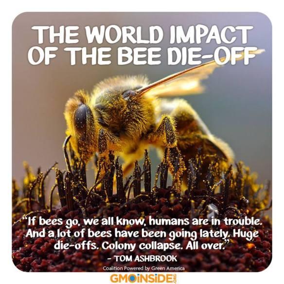 WE NEED BEES!!!