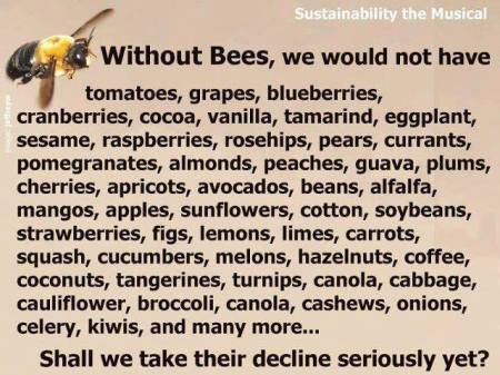 Without bees .... all this would be gone??
