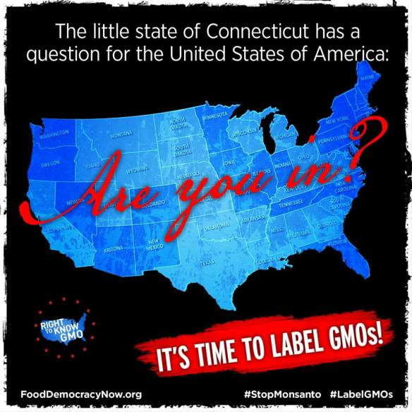 Are you in??? ... Connecticut asks!!