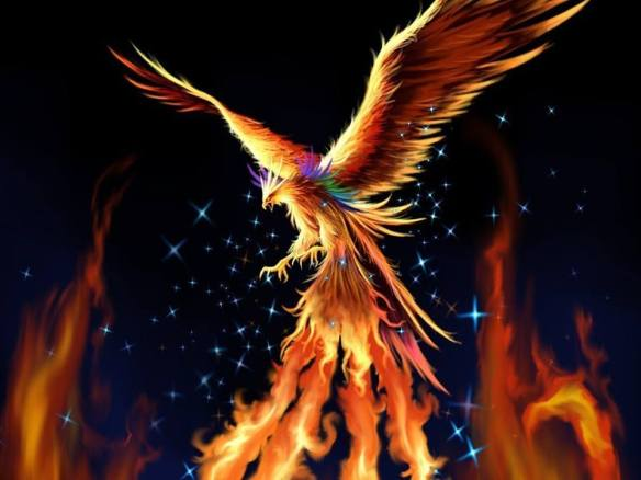 The story of the PHOENIX ..... Rising!!!