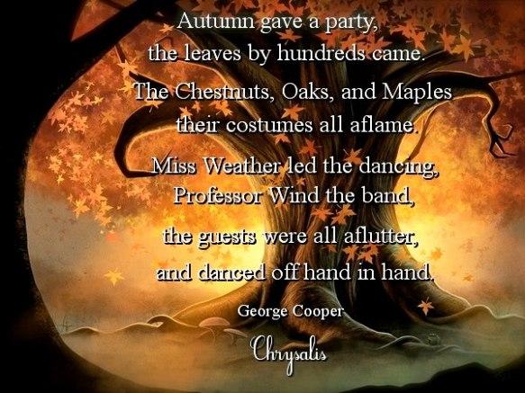 Quite a season ..... Autumn!