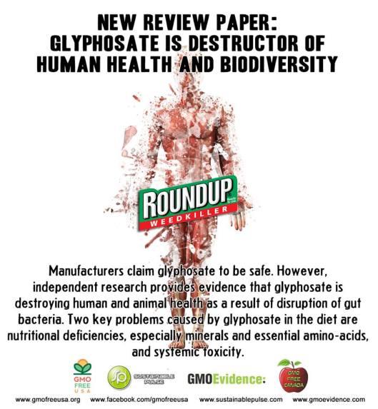 RoundUp = Glyphosate .... Monsanto!!!