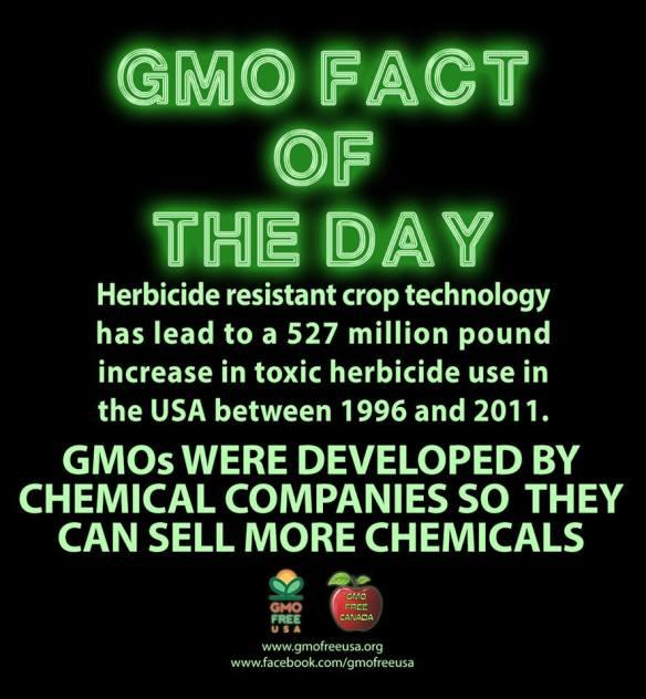 GMO fact ......
