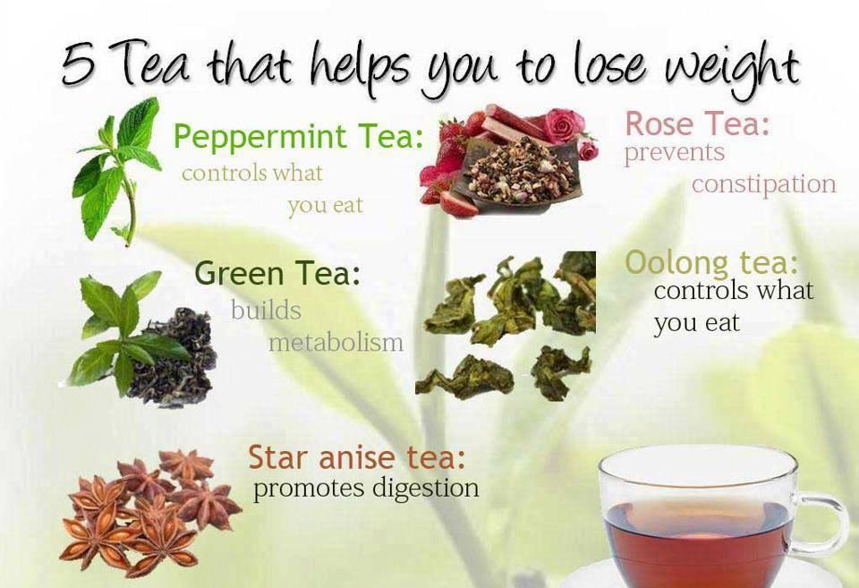 Dr Rex Equality Medical Corner Benefits of drinking tea Green tea ...