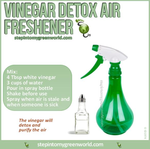 Dr Rex Equality Environment Healthy Tips Vinegar Detox Air Freshener