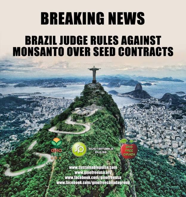 BREAKING NEWS!!! Brazil .....
