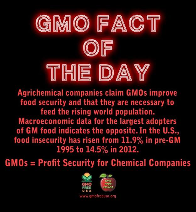 GMO fact for the day ...... October 10, 2013