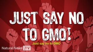 No to GMOs!!!