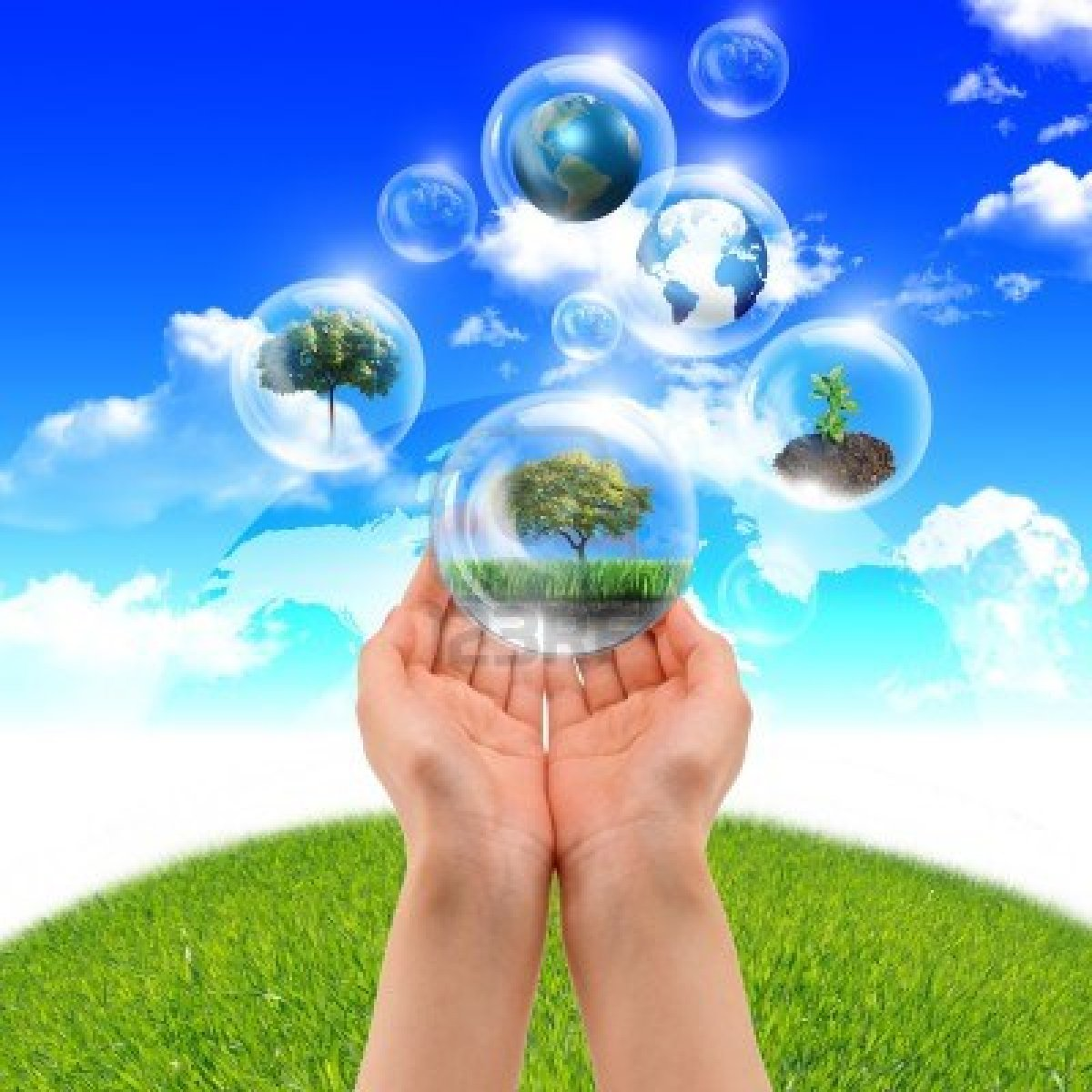 essay on environmental protection and nature conservation essay on environmental protection and nature conservation careers
