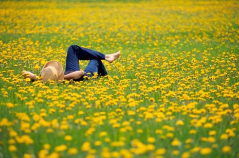 Image result for girl in the field of flowers