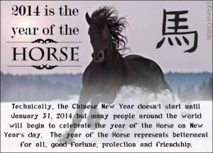 Horse-14