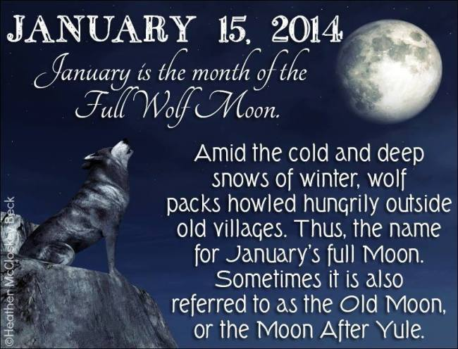 Full Wolf Moon …. almost missed it!!