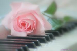 PianoR6