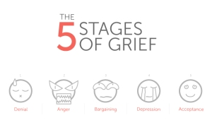 5Stages