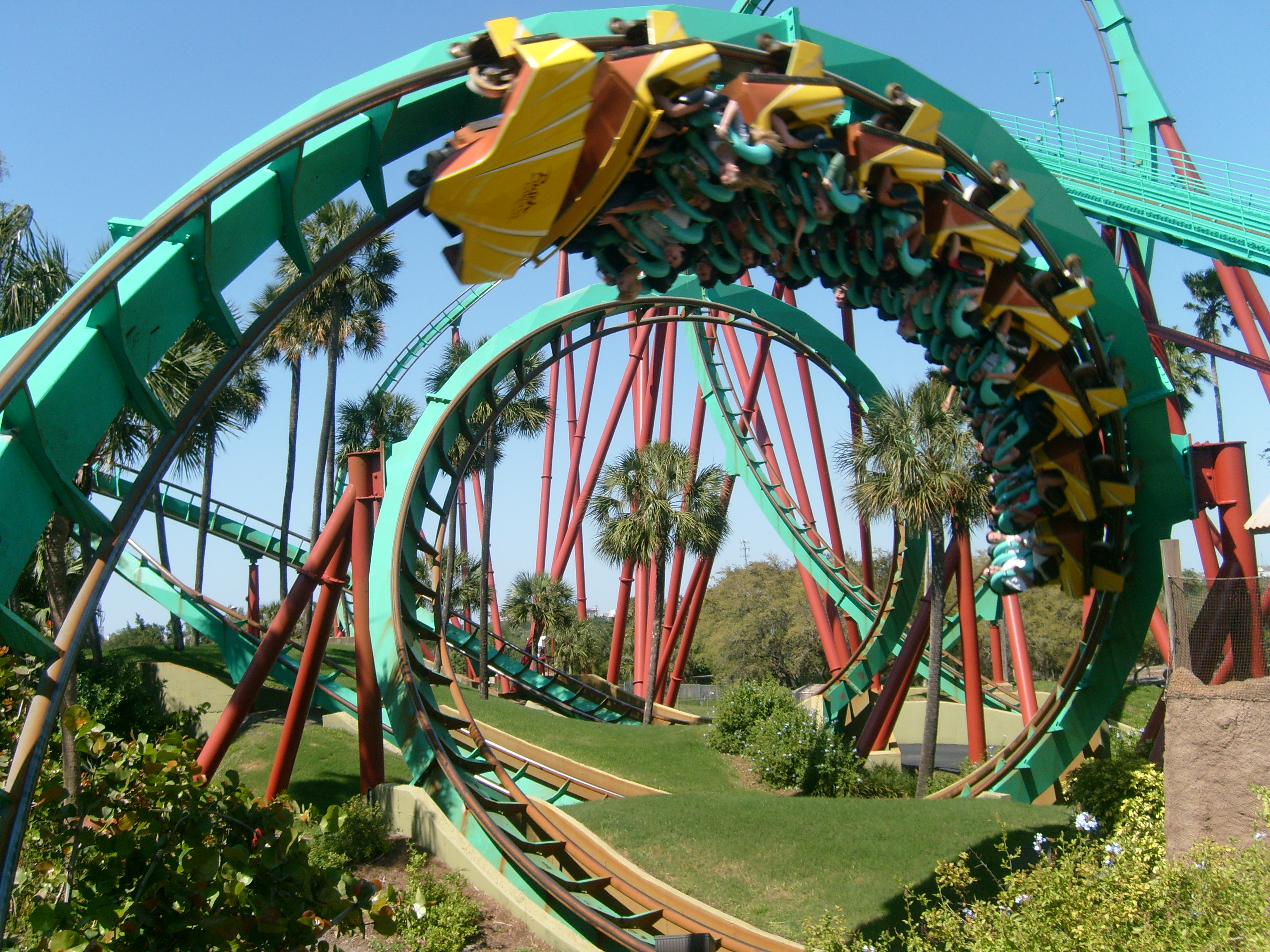 Roller coasters busch gardens it is what it is - Roller coasters at busch gardens ...