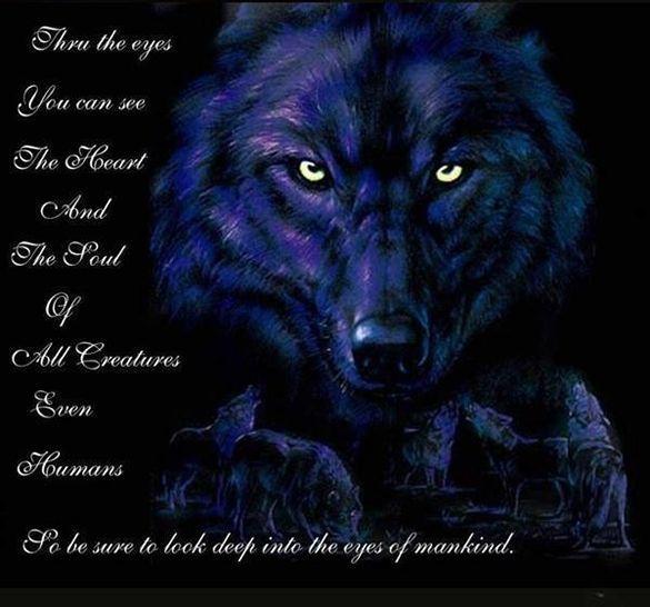 Wolf Spirit Totem ..... symbolism! (4/6)