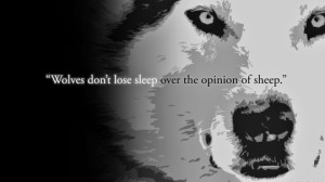 Wolves-And-Sheep-Quotes-Images-540x303
