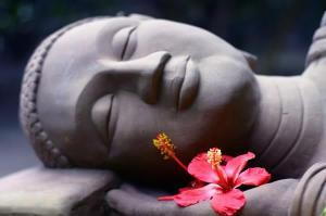 BuddhaHIb