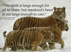 EarthLarge