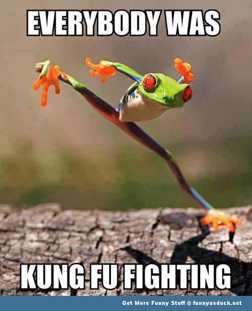 Kung-Fu-Frog-Meme