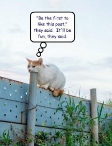 CatPost