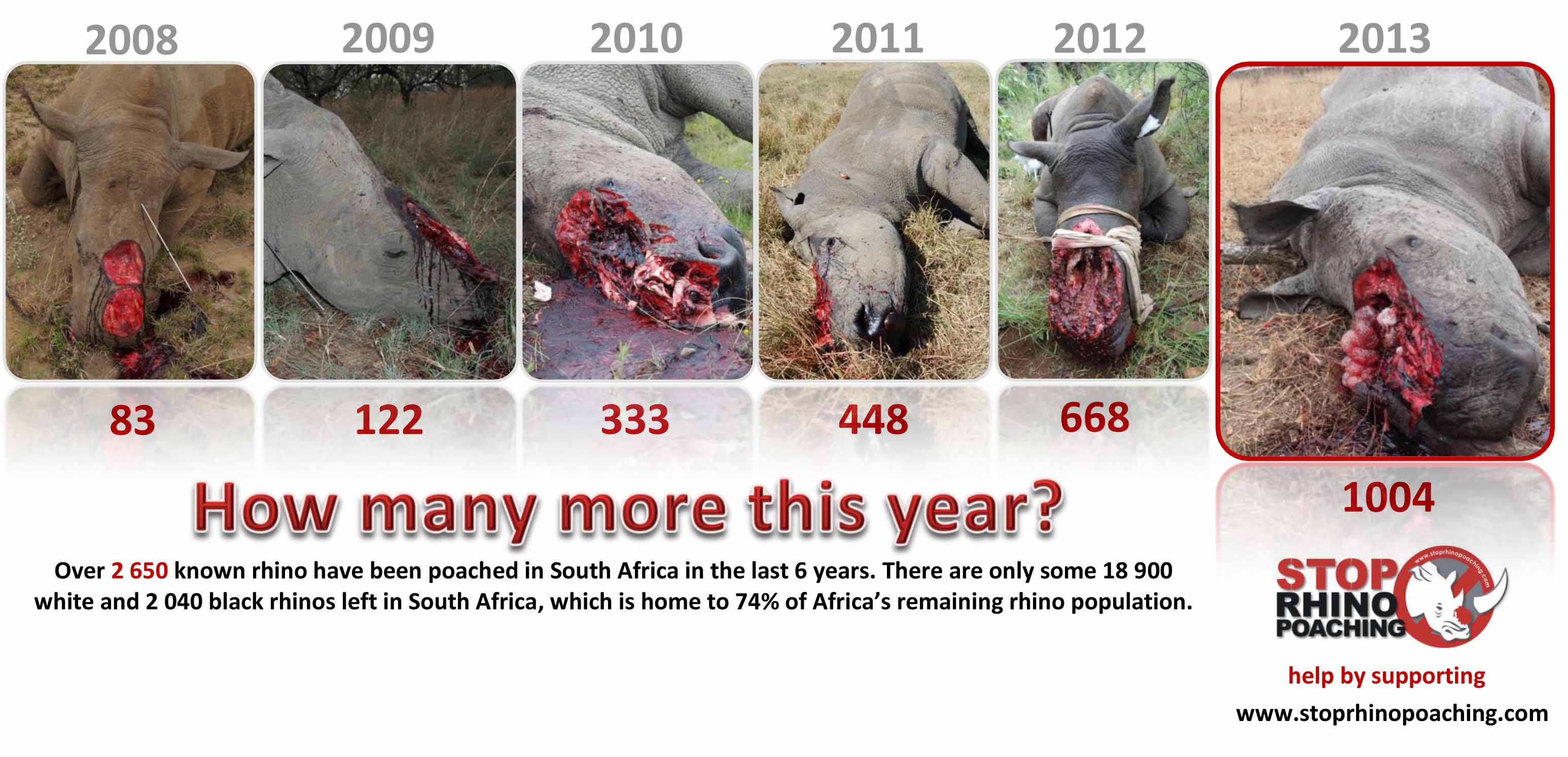 K Chenpantry warning graphic photos bloody poachers organized crime insatiable demand it is what it is