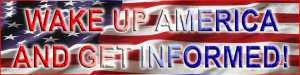 1169d-american-flagwide
