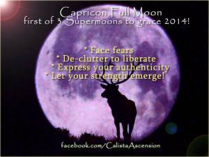 CapricornMoon