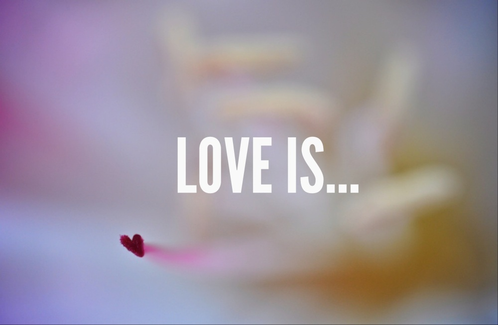 To start the day .... What is love??  (5/6)