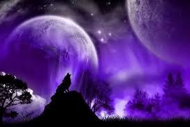 WolfPurp