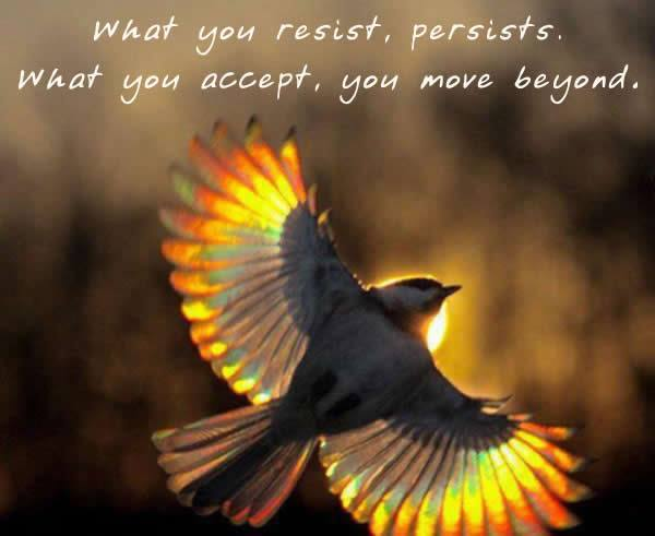 to start the day what you resist persists it is what it is