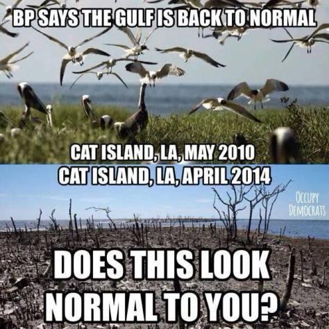 GulfBP