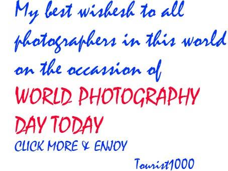 Photo7