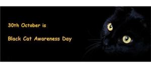 Banner_-_national_black_cat_day