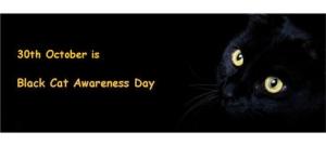 Banner_-_national_black_cat_day