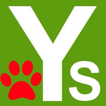 Yous2