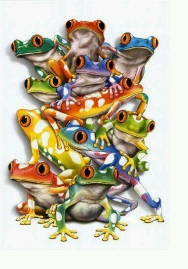 ColorFroggies