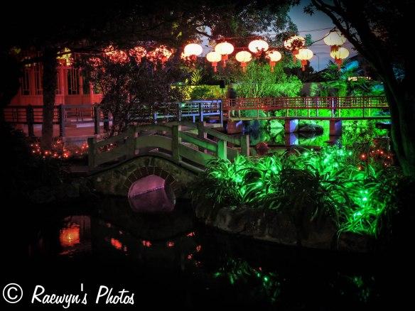 Festival of Lights (10 of 1)