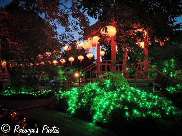 Festival of Lights (12 of 1)