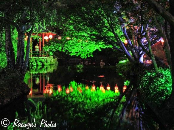 Festival of Lights (13 of 1)