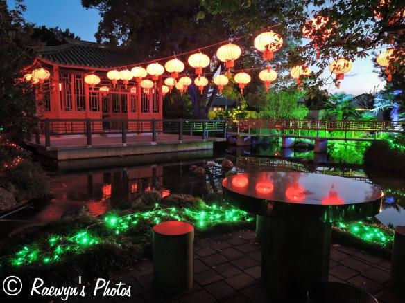 Festival of Lights (14 of 1)