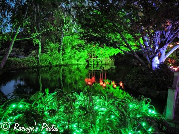 Festival of Lights (15 of 1)