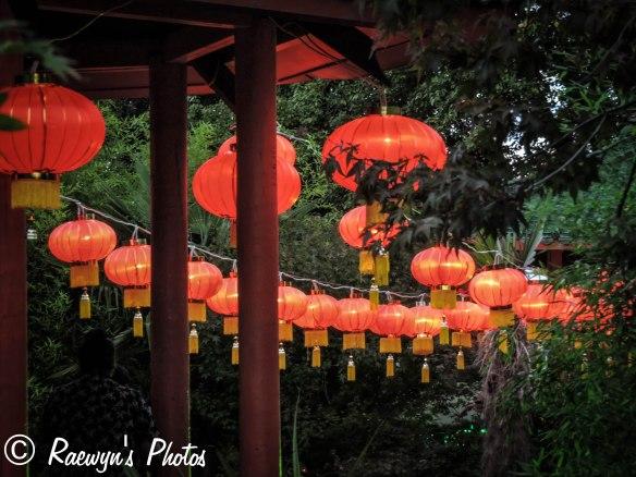 Festival of Lights (17 of 1)