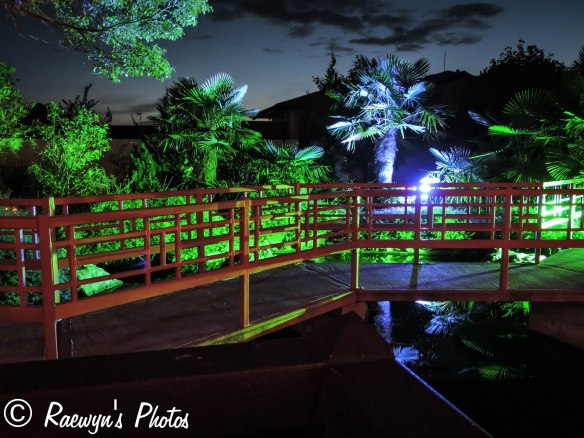 Festival of Lights (4 of 1)