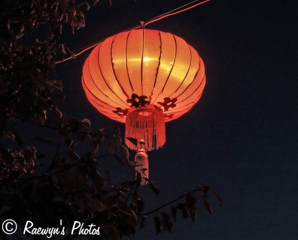 Festival of Lights (6 of 1)