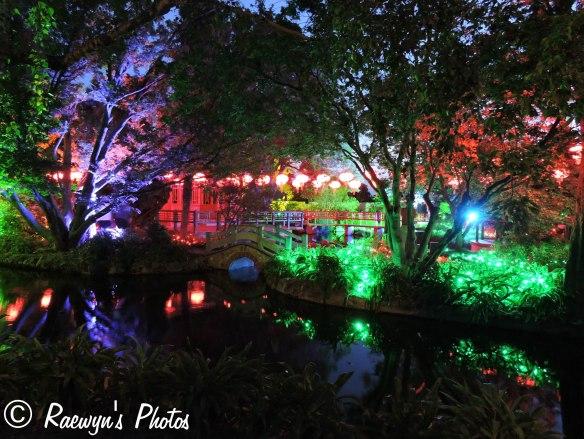 Festival of Lights (8 of 1)