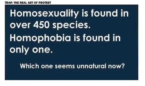 Homosexual not a choice