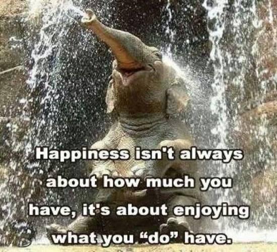 HappyEle