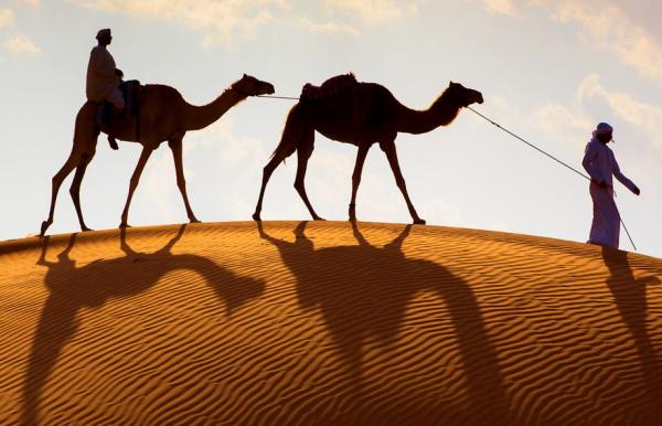camel-sand-richard-bernabe